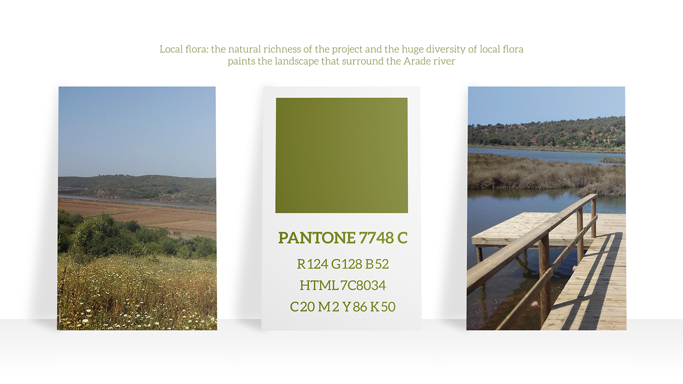Color palette for Brand Identity based on the local flora surrounding the Arade river