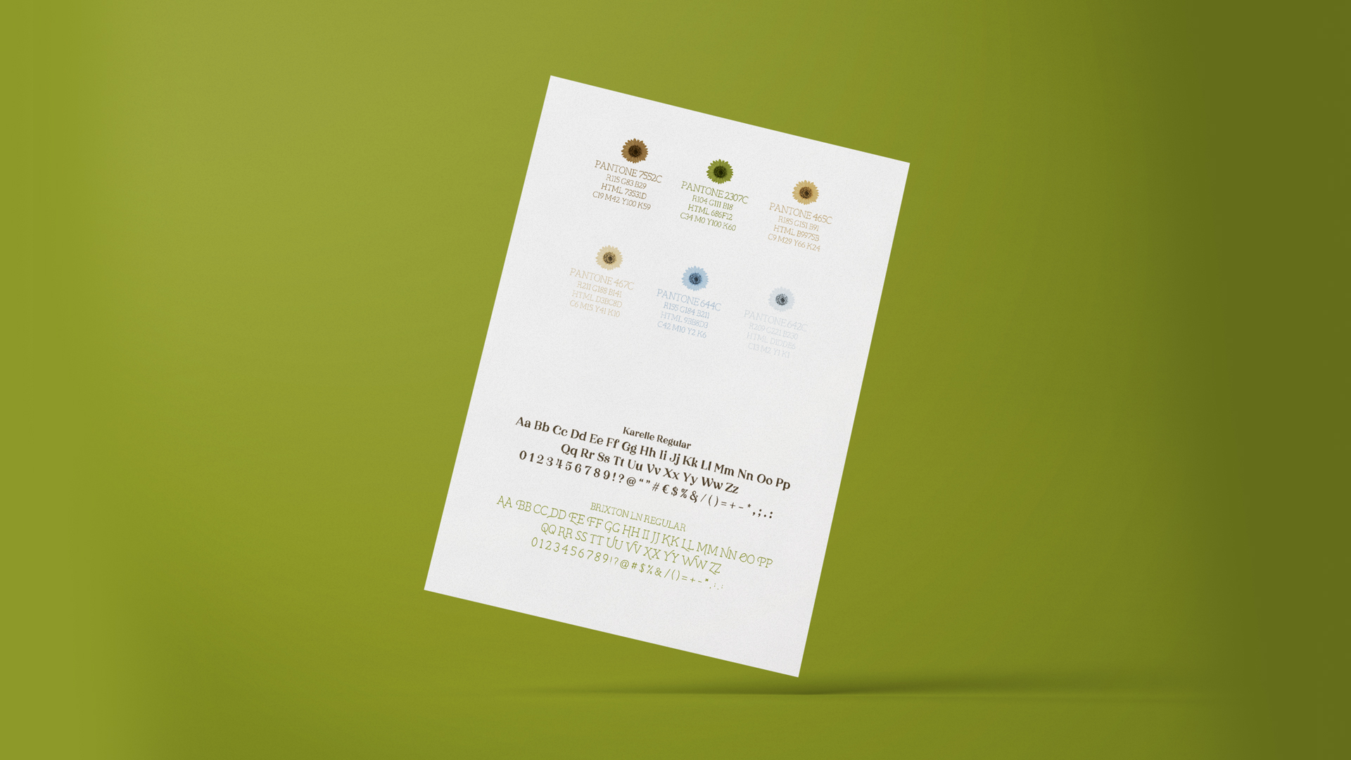 Wellness Brand Design secondary color palette and fonts