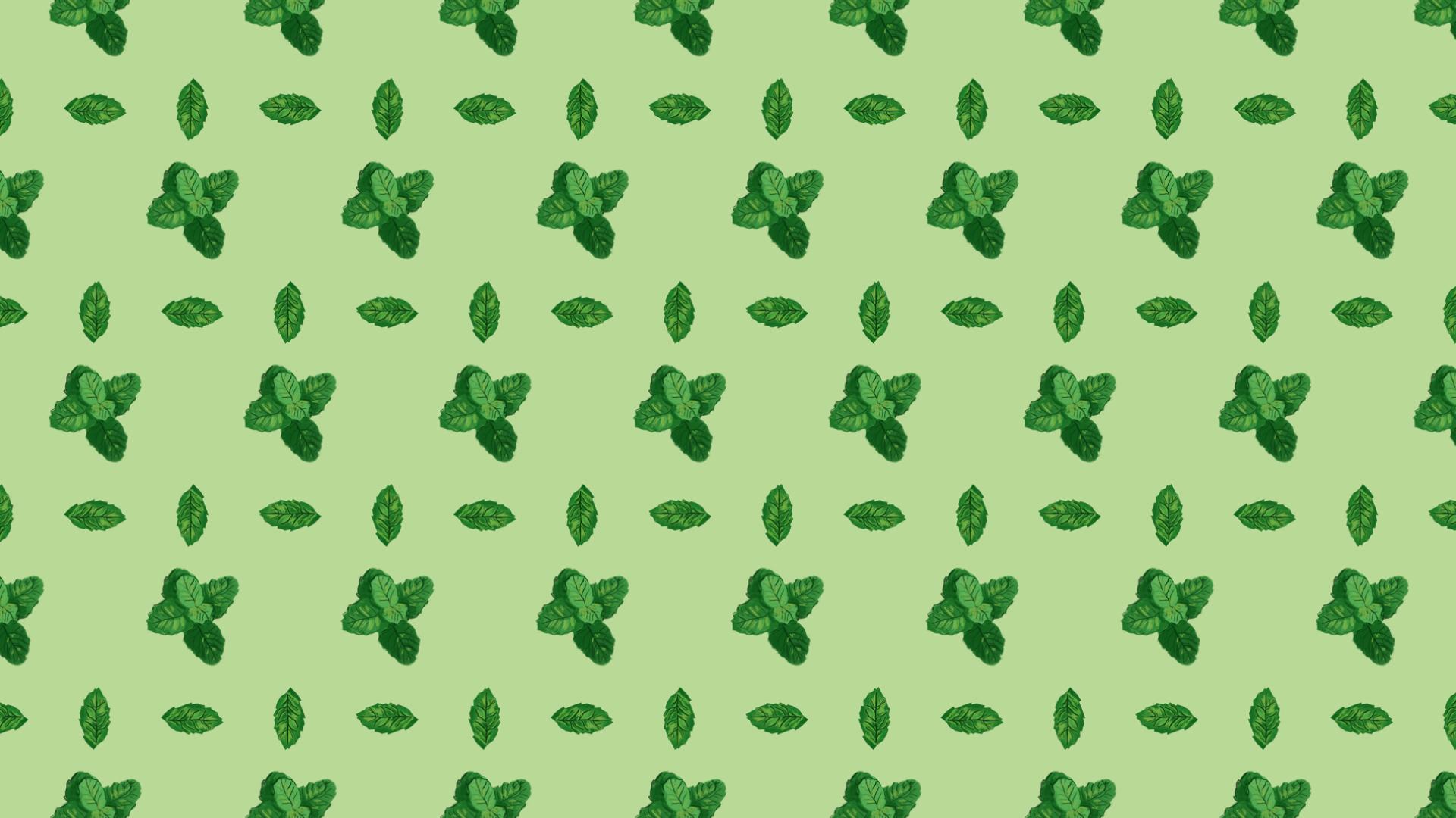 Wellness Brand Design - Mint illustrations pattern