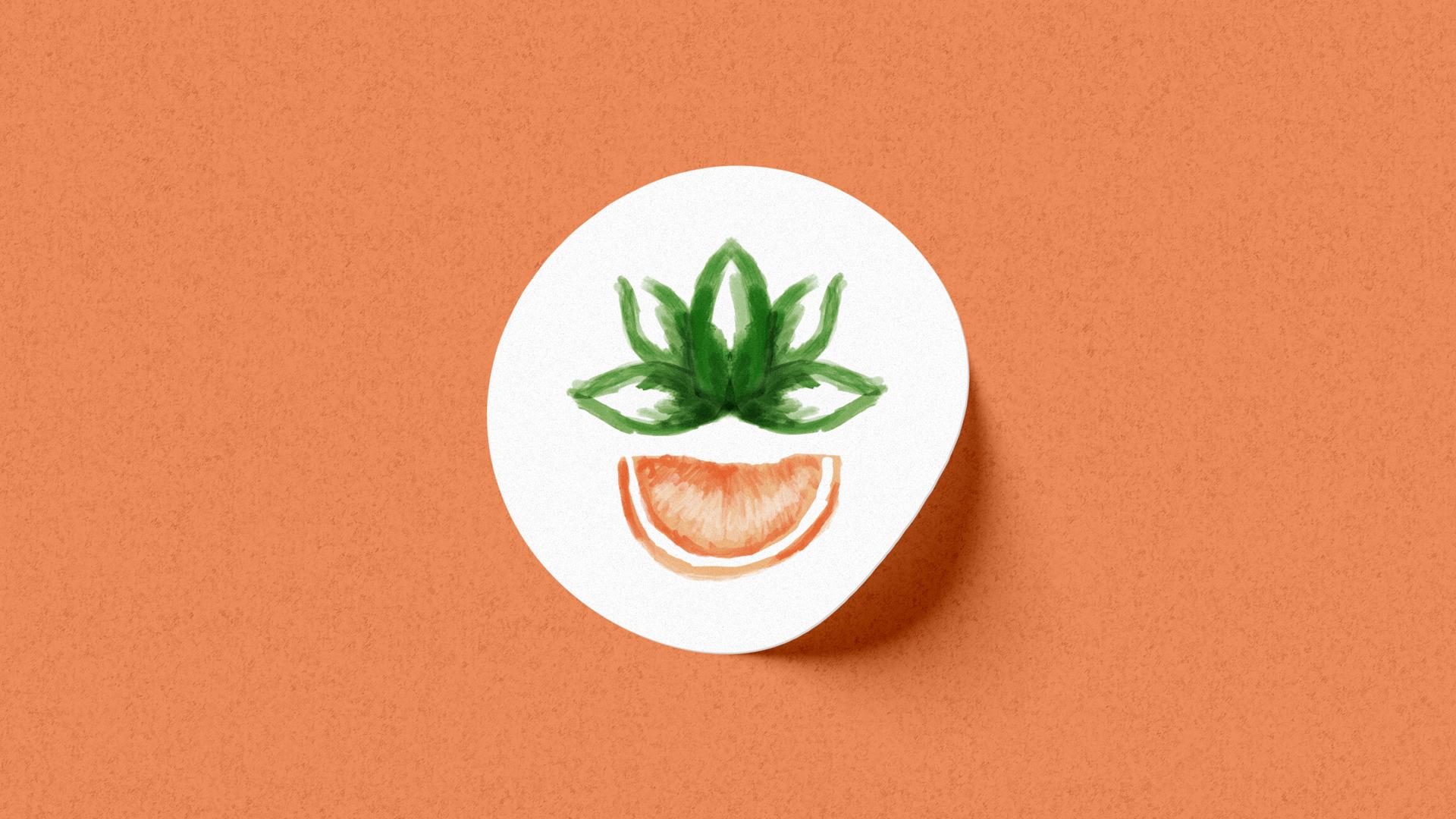 Wellness Brand Design Maria Lains Nutritionist Logo & Brand Identity Project